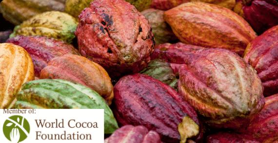 Thành viên Hiệp hội Bơ Cacao Thế giới (WCF)